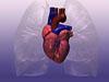 细谈小儿先天性心脏病的手术治疗